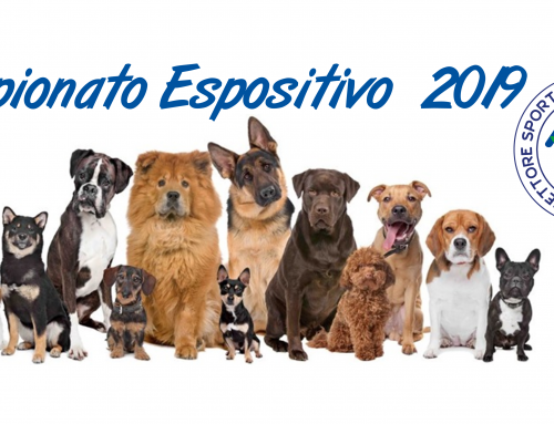 In preparazione il Campionato Espositivo ACSI Cinofilia 2019