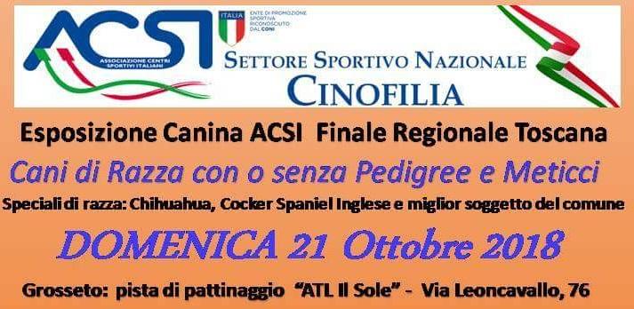 FINALE EXPO' ACSI Cinofilia – Toscana
