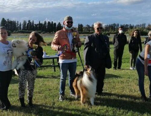 Expò Canina Grosseto